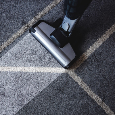 professional carpet cleaning dubois wy